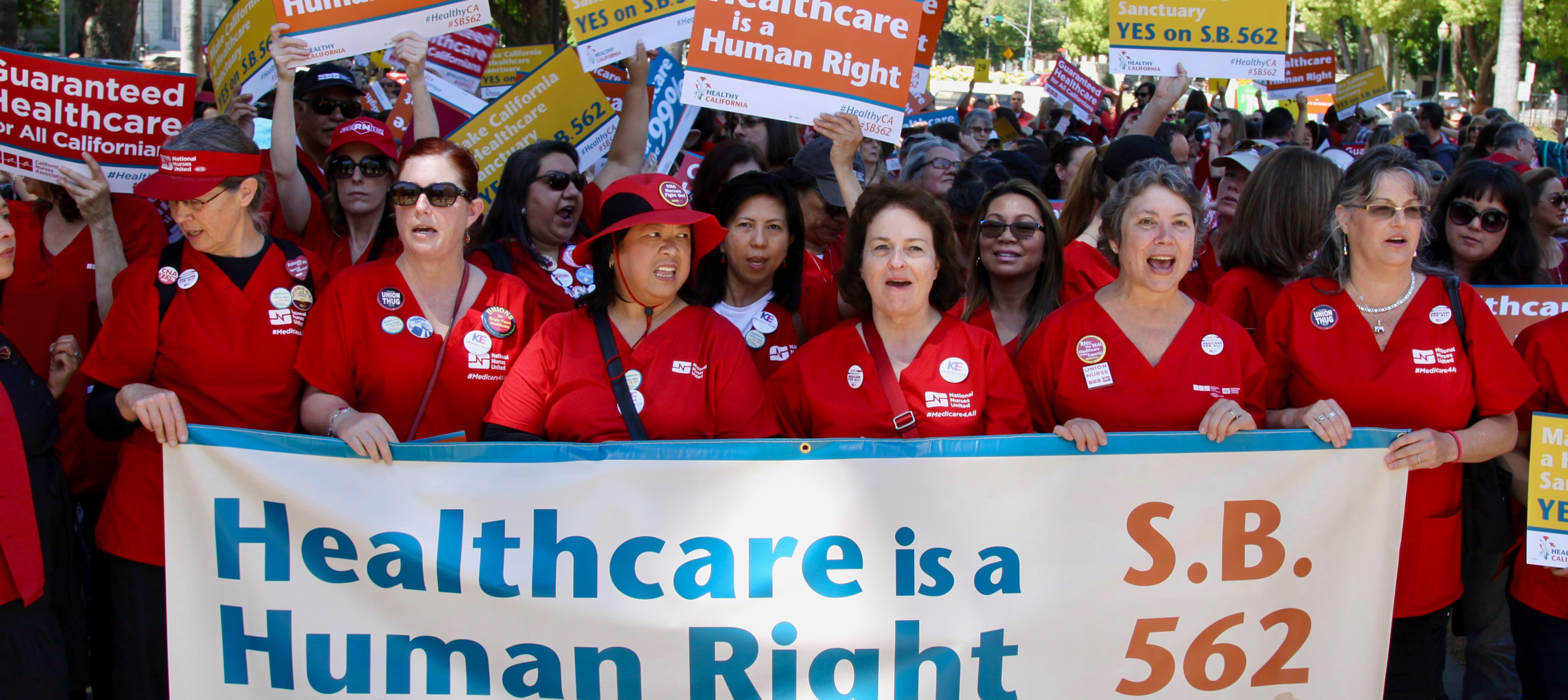 RNs and activists from across the state rally outside the State Capitol