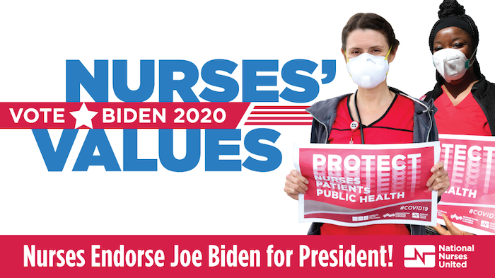 "Graphic ""Vote Nurses Values: Biden 2020"""