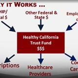 Healthy California Trust Fund